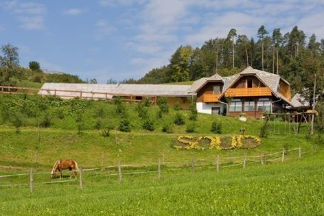 Turistična kmetija Pr' Soud, Radomlje